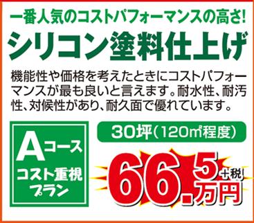 シリコン 30坪 66.5万円