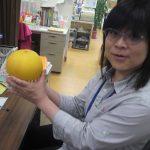 謎の巨大果物