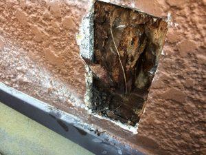 壁の下地の木は腐ってました